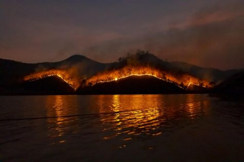The photo shows a wildfire aggressively spreading through a forest near a lake.
